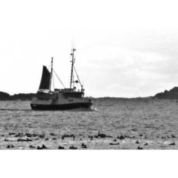 Bare ut Mesan båt | Mesanseil til salgs RE-54